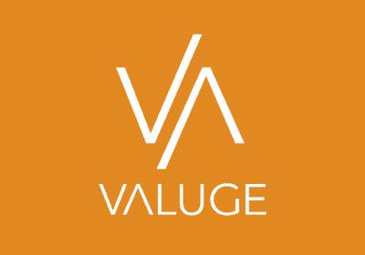 Logo Valuge